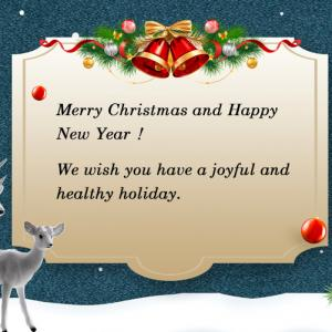Best wish for a merry Christmas and a happy new year